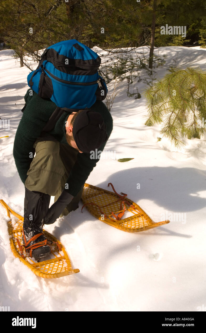 A man straps on his snowshoes for a trek Snowshoe Country Lodge Isabella Minnesota - Stock Image