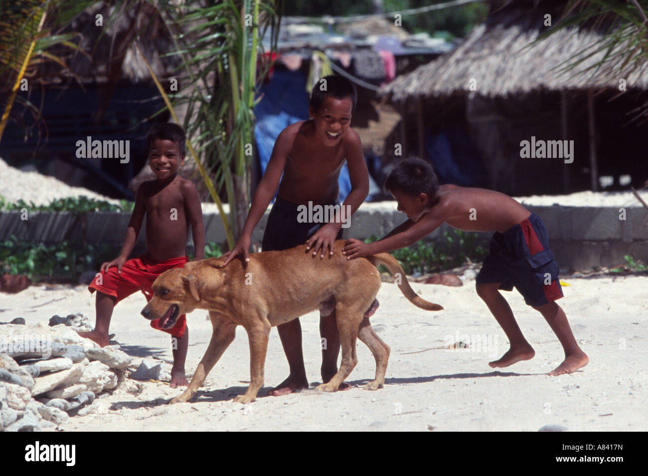 Gilbertese Kids playing with a dog on the Island of Tarawa, Kiribati, South Pacific - Stock Image