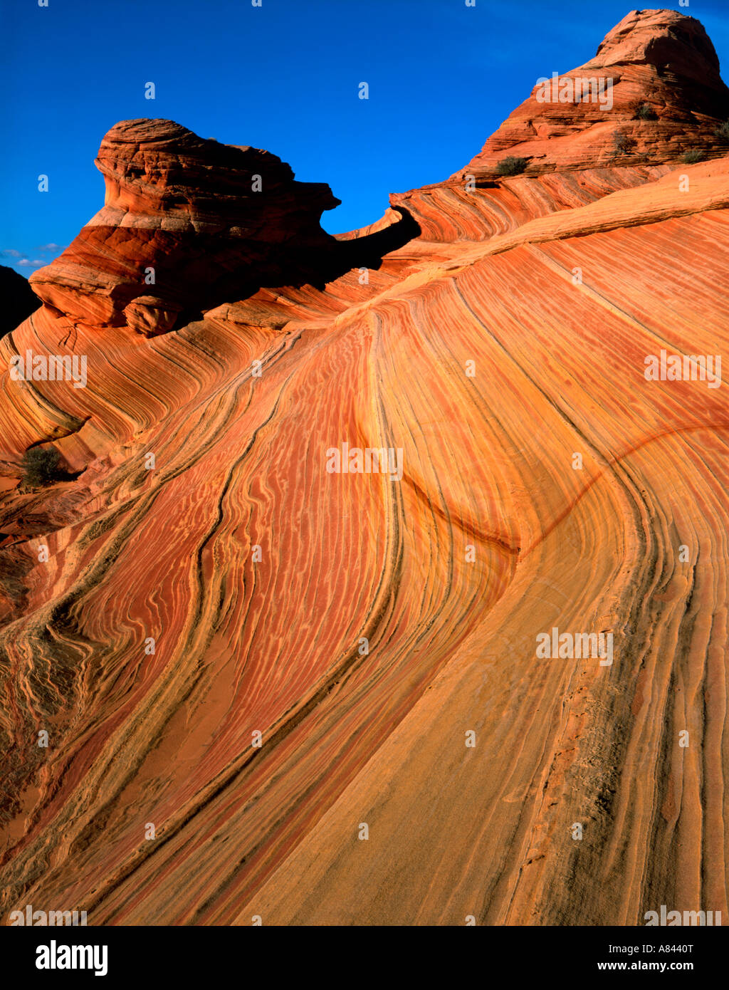 Parallel lines in one of the erosional rock formations at Coyote Buttes on the north edge of the Paria Canyon Vermilion Stock Photo