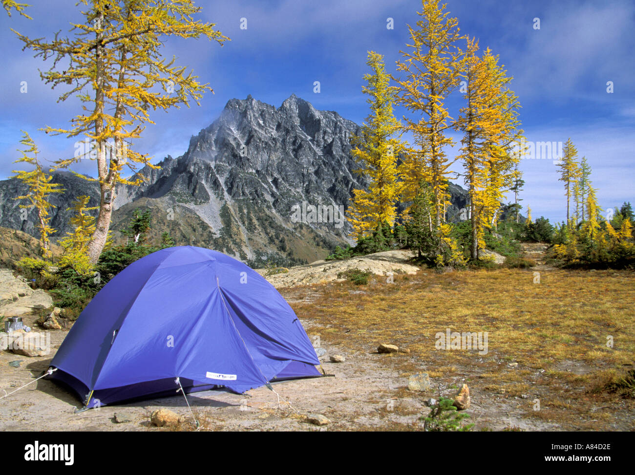 Tent in campsite Lake Ingalls Alpine Lakes Wilderness Wenatchee National Forest Cascade Mountains Washington - Stock Image