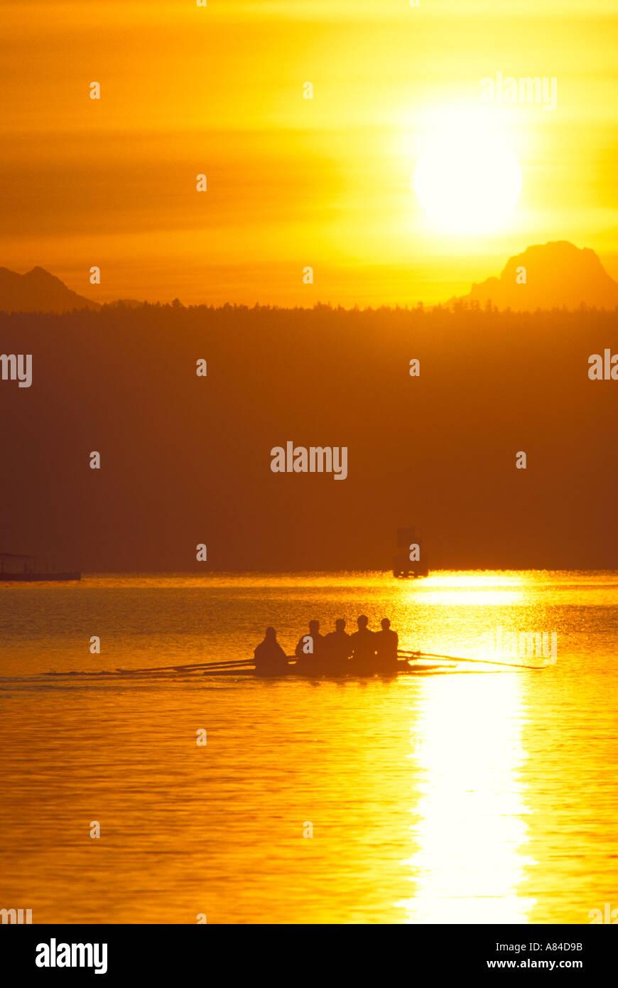 Crew rowing into sunrise on Lake Washington Washington - Stock Image