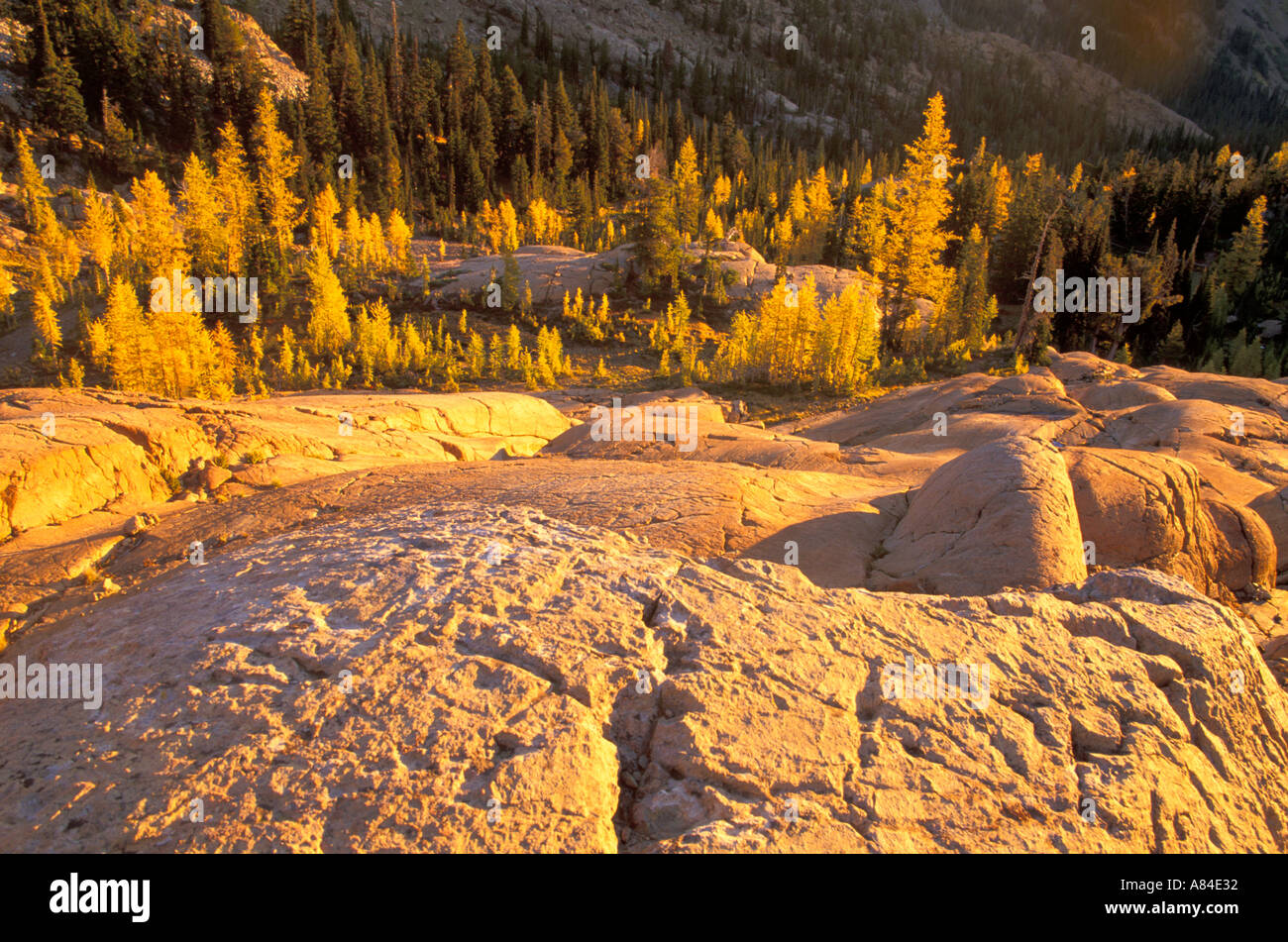 Sunrise over textured slabs of rock Lake Ingalls Wenatchee National Forest Cascade Mountains Washington - Stock Image