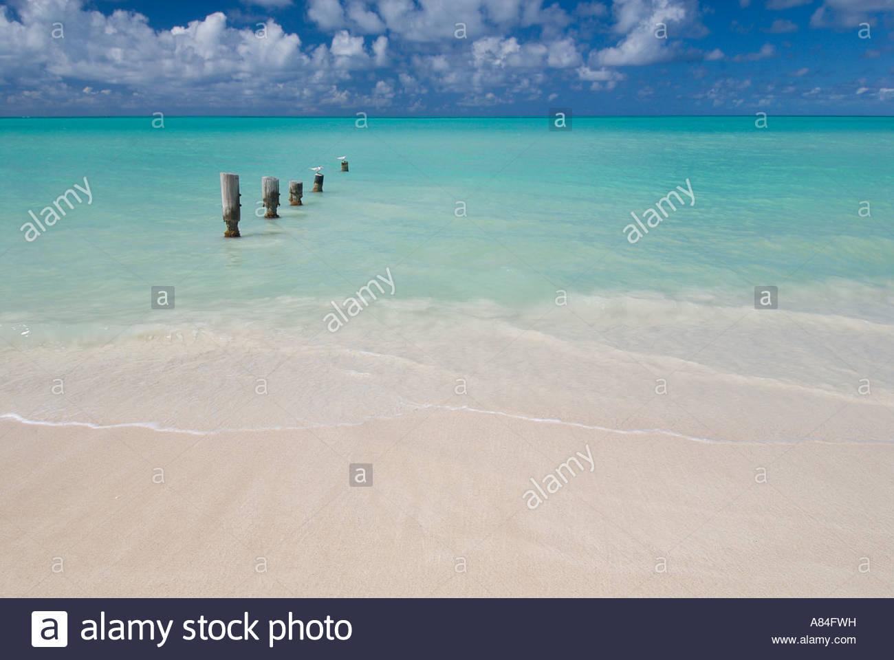 Wooden posts in the sea at Dickenson Bay, Antigua, Leeward Islands, Caribbean - Stock Image