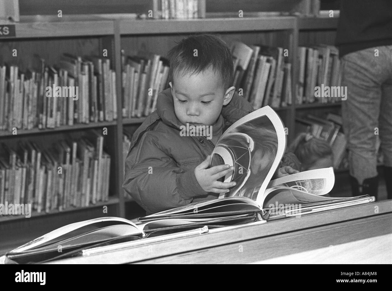 Young Chinese American child looks at a book in the New York Public Library Chinatown branch - Stock Image
