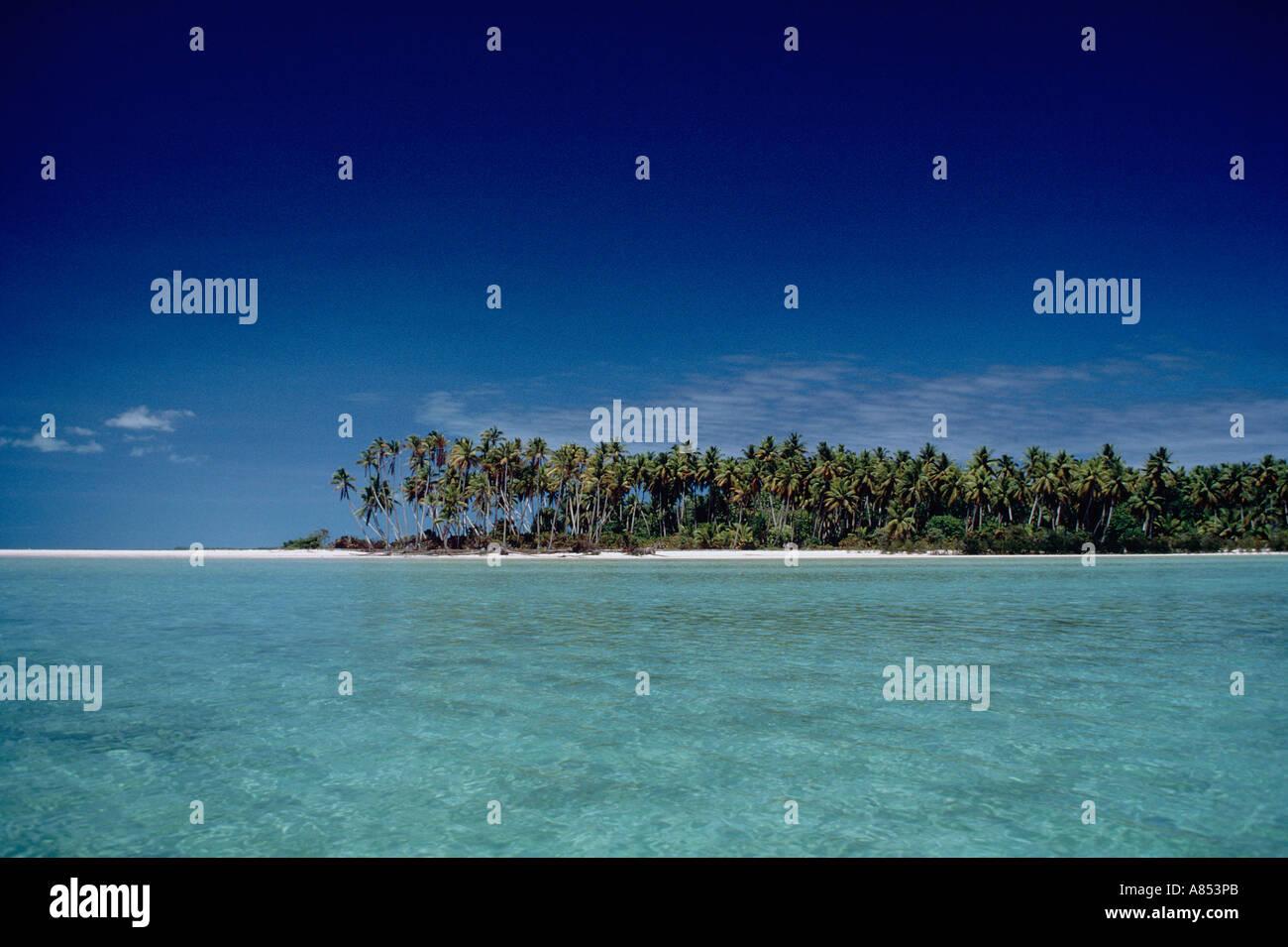 Kiribati. Tarawa. Tropical beach with coconut palm trees. Stock Photo