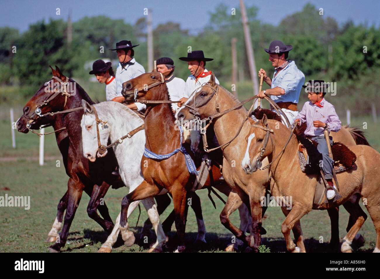 South America. Argentina. Gauchos riding horses. - Stock Image