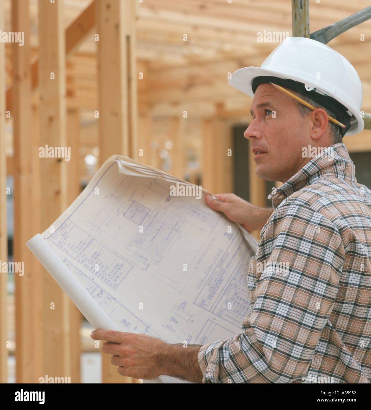 architect studying building blueprints during construction - Stock Image