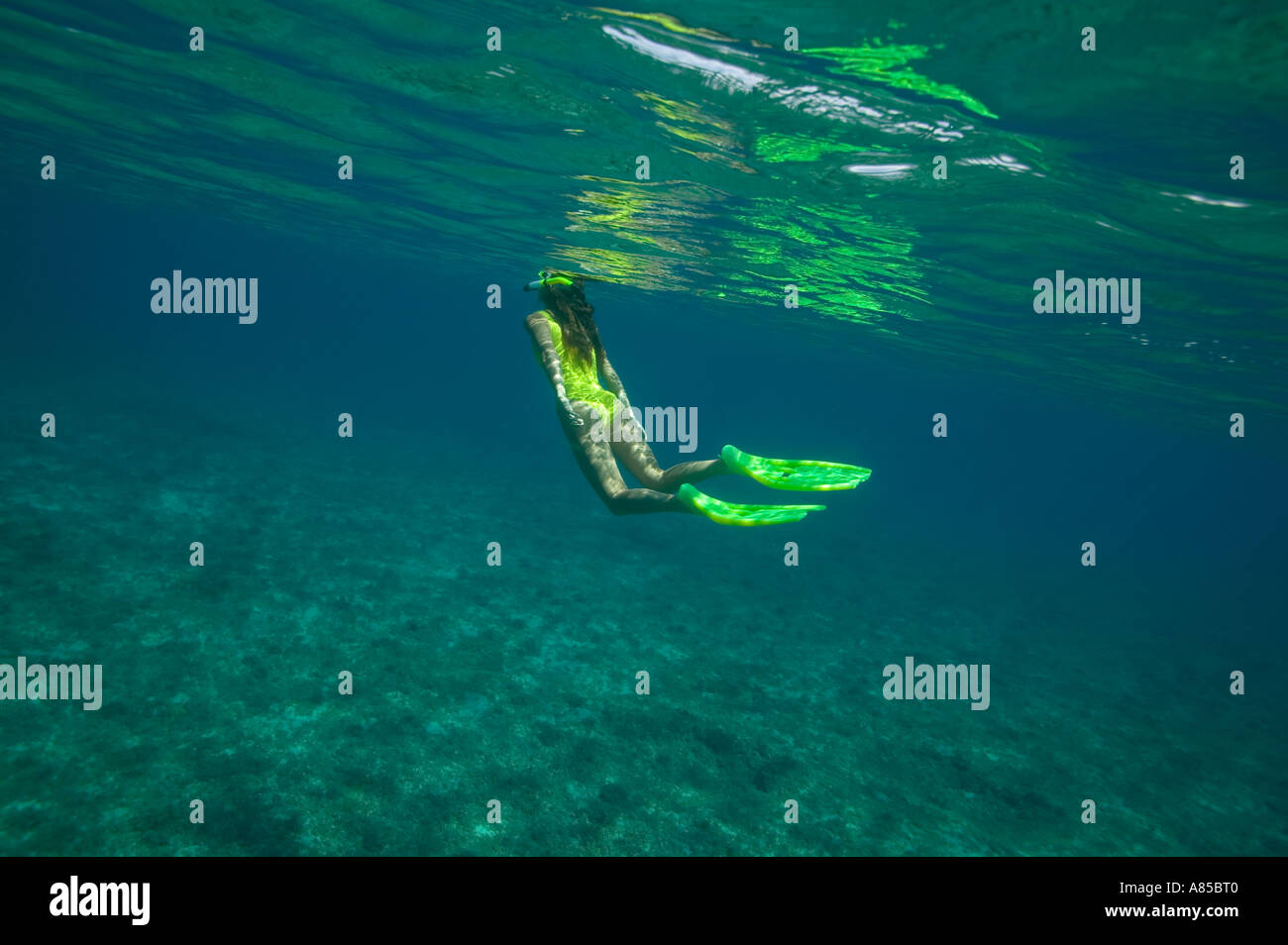 Woman freediving Elbow Cay Cay Sal Bank Bahamas Islands - Stock Image