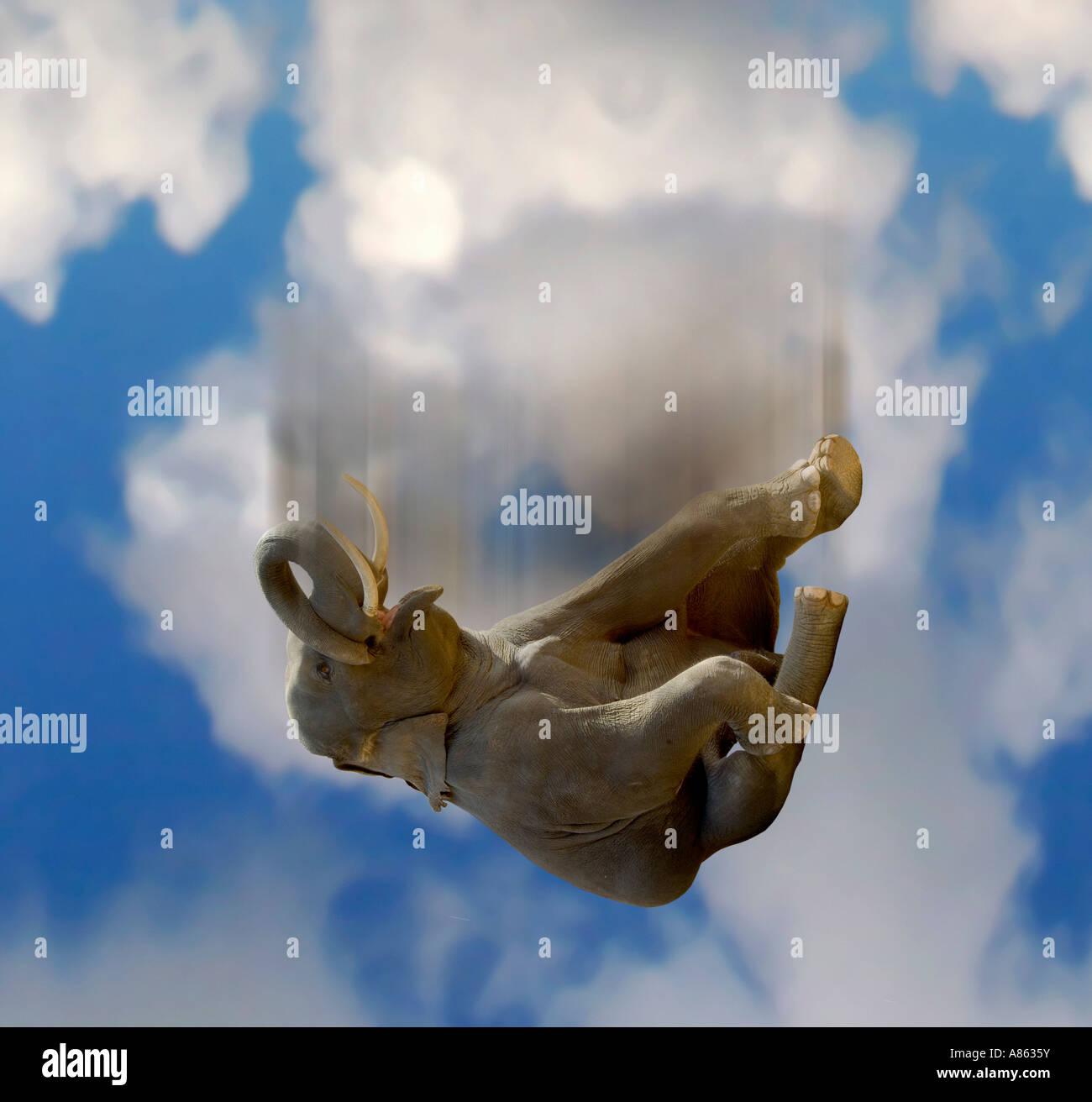 Falling elephant - Stock Image