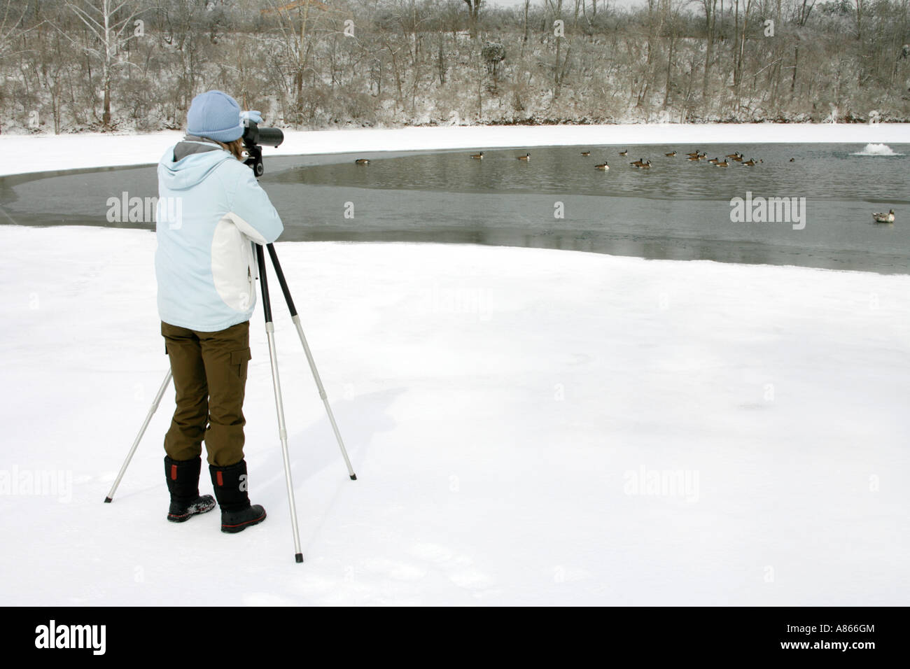 Winter Female Birdwatcher with Spotting Scope at Lake - Stock Image