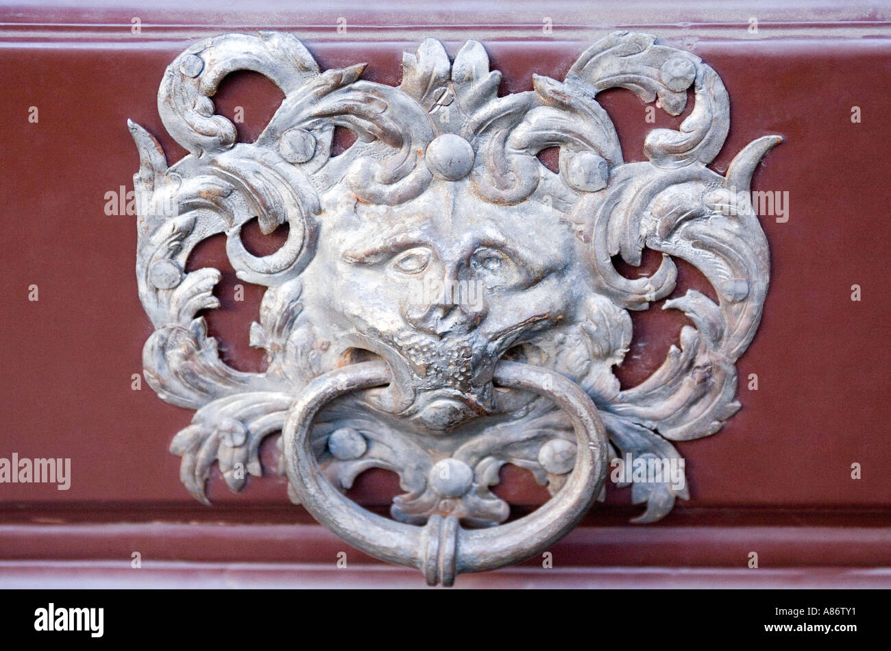 Classic, Ornate, Silver Lion Head Door Knocker Stock Photo ...