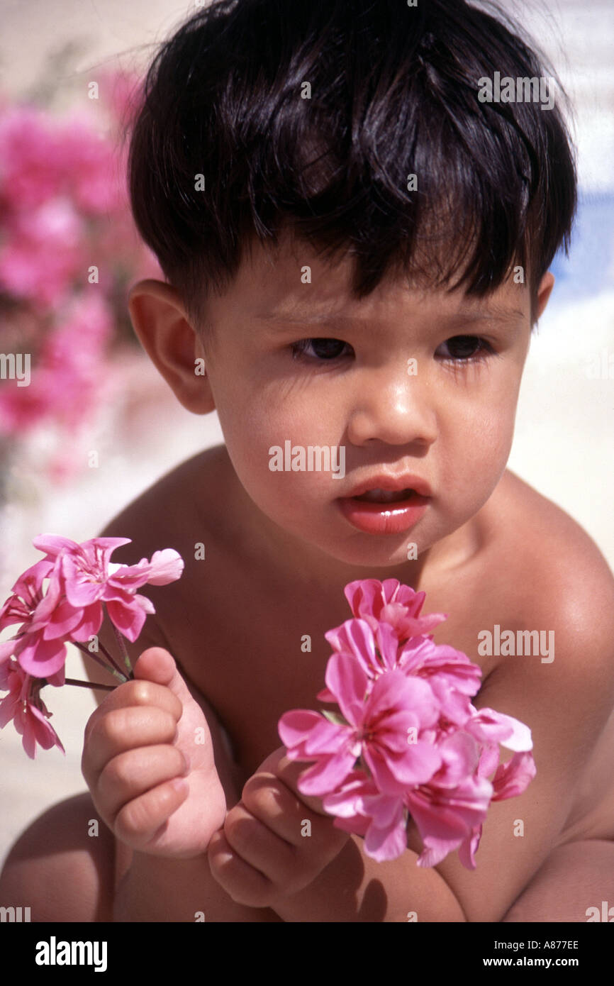 A young boy 2 3 year old Asian American Hawaiian holding pink geranium flowers in his hands while squatting down looking away black hair flower sunlight POV - Stock Image
