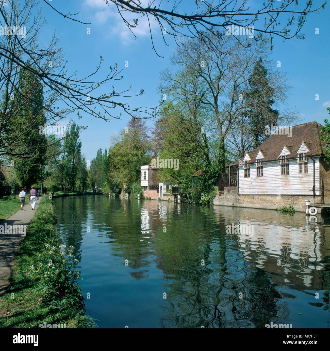 River Lea in Spring, Ware, Hertfordshire, United Kingdom - Stock Image