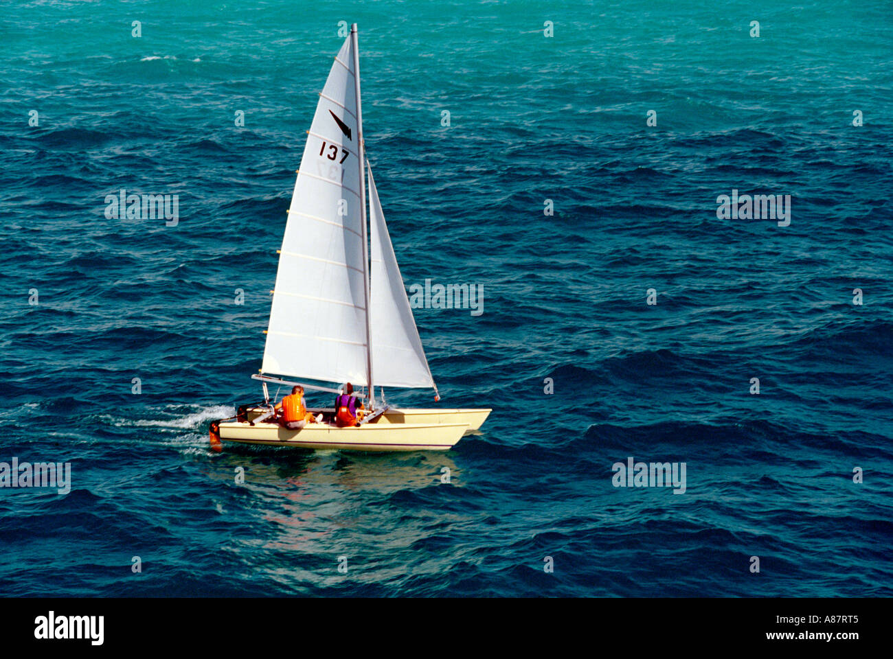 Dubai UAE Catamaran Sailing Off The Emirates - Stock Image