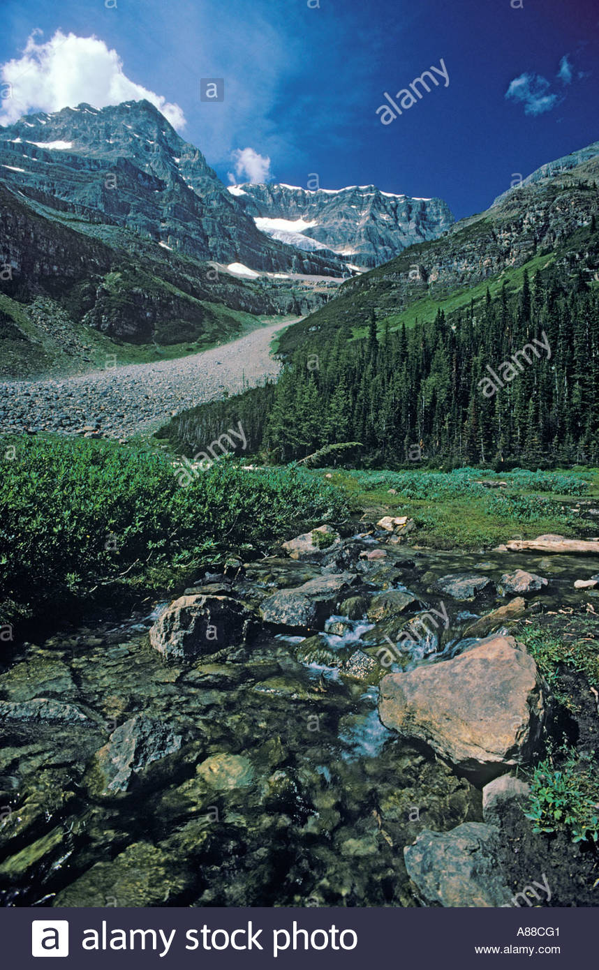 Plain of the Six Glaciers above Lake Louise in Banff National Park in Alberta Canada - Stock Image