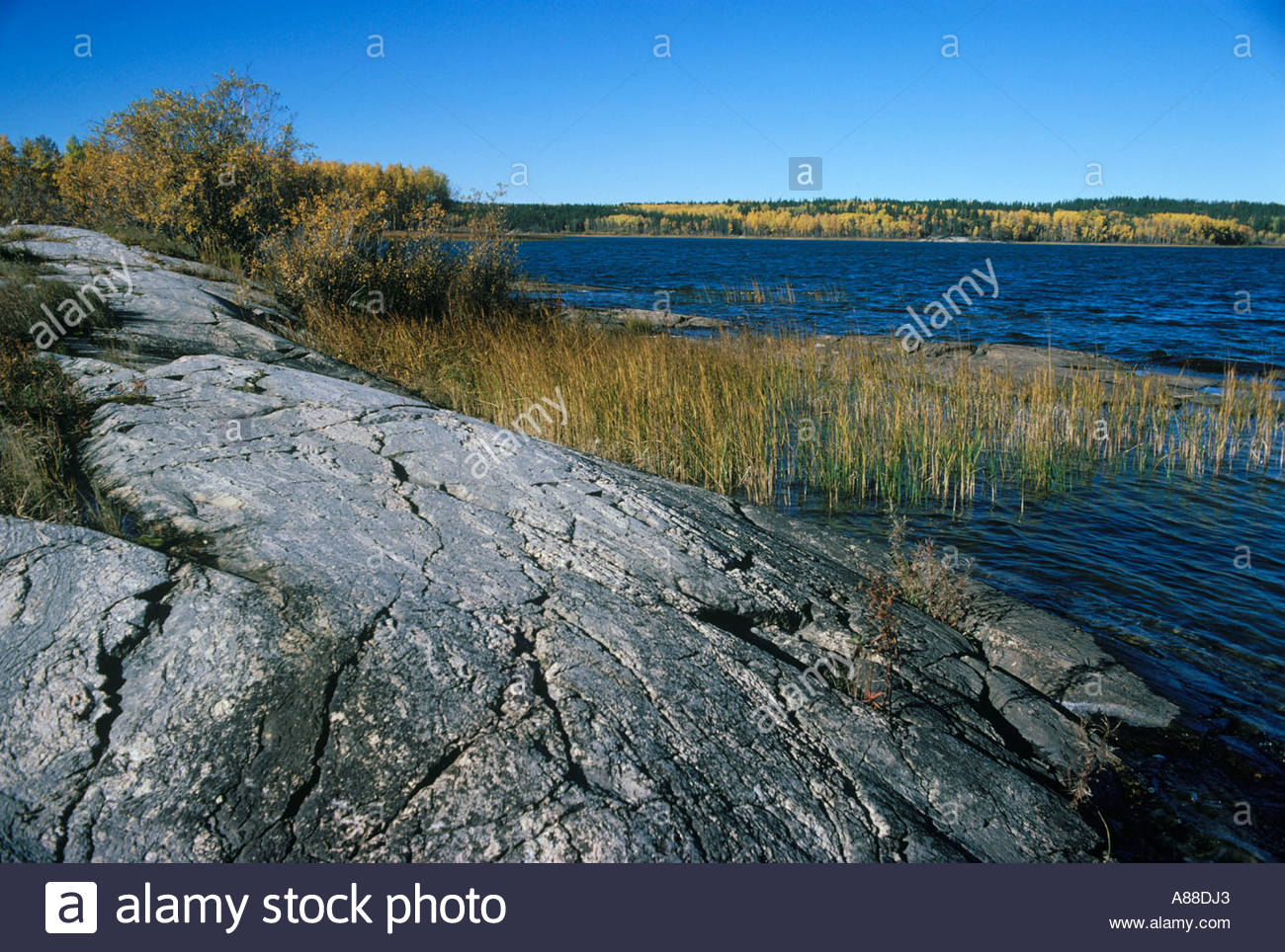 Precambrian Stock Photos Amp Precambrian Stock Images Alamy