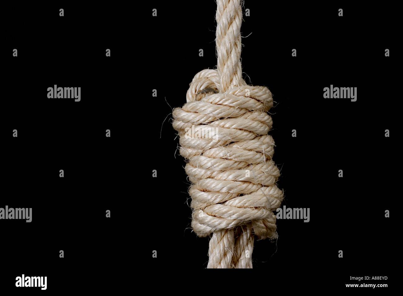 Rope Hang Man's Noose on black background - Stock Image