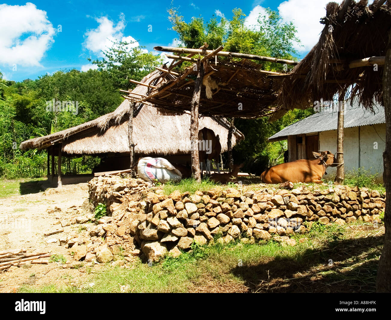 Traditional Wood And Straw Buildings In The Village Of Ende Lombok Indonesia