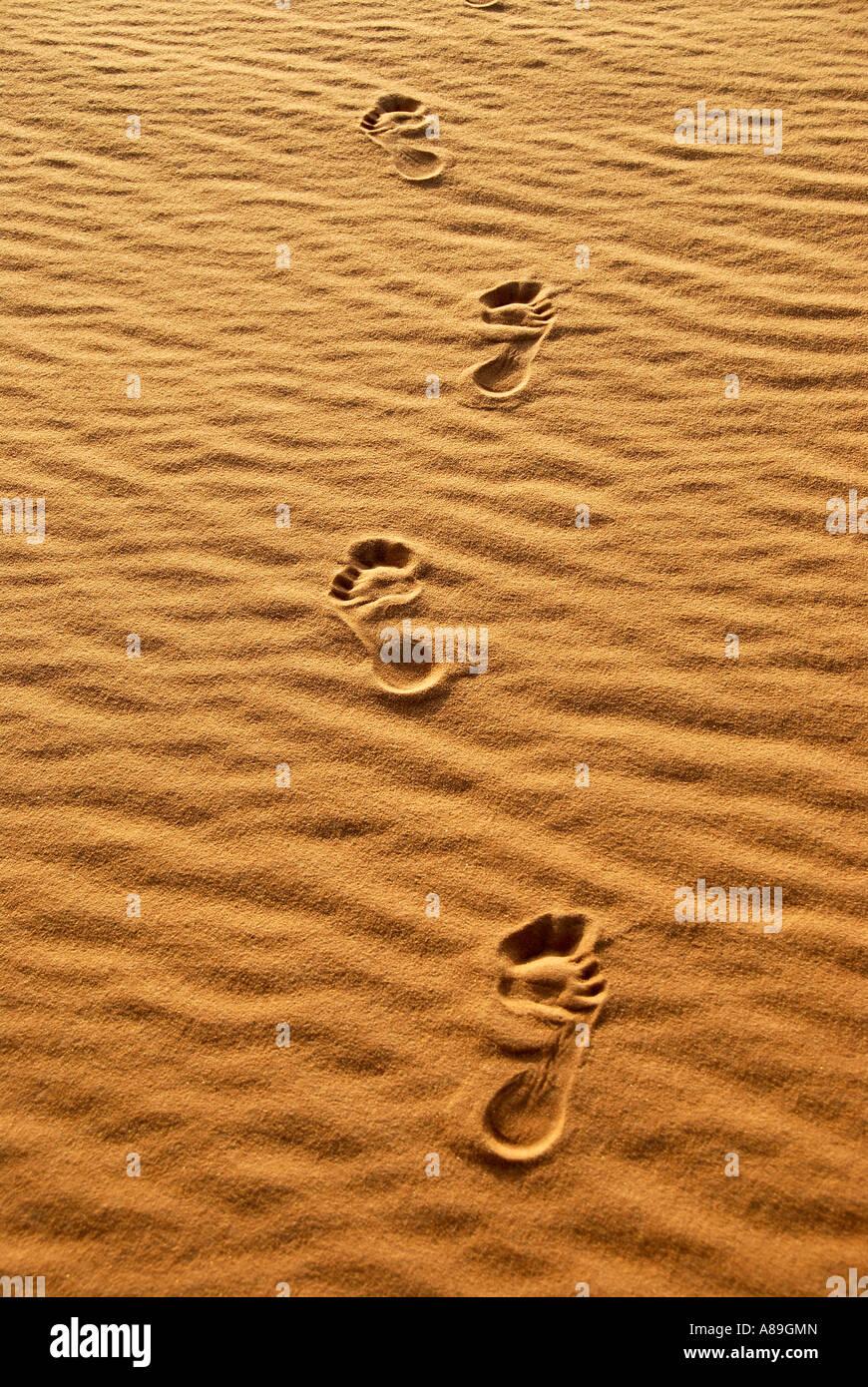 Human track Homo sapiens sapiens with in the sand Mandara Libya Stock Photo
