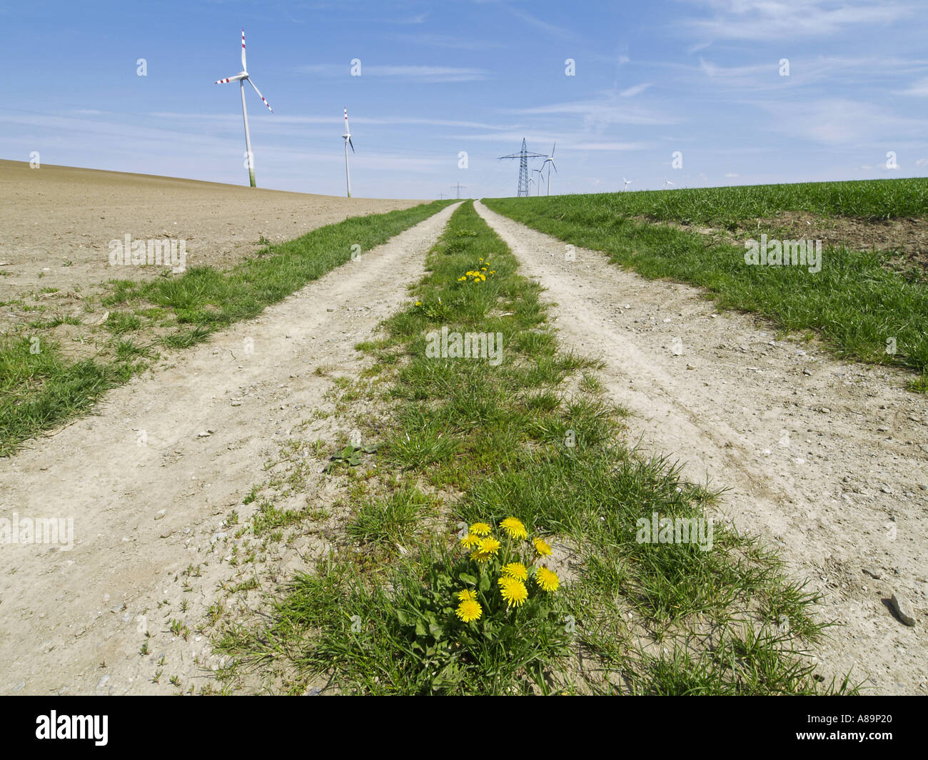 Turbine Geometry Grass Green Horizon Land Stock Photos