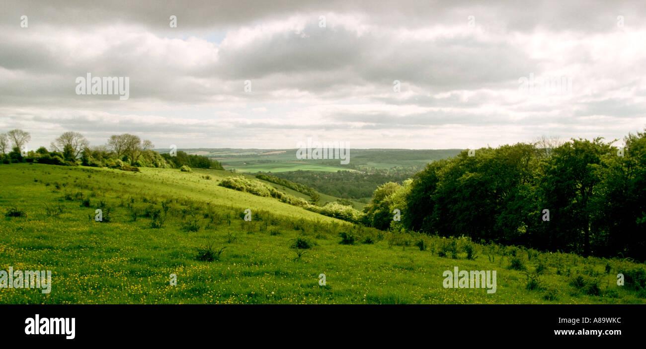 Berkshire The Goring Gap panoramic Stock Photo