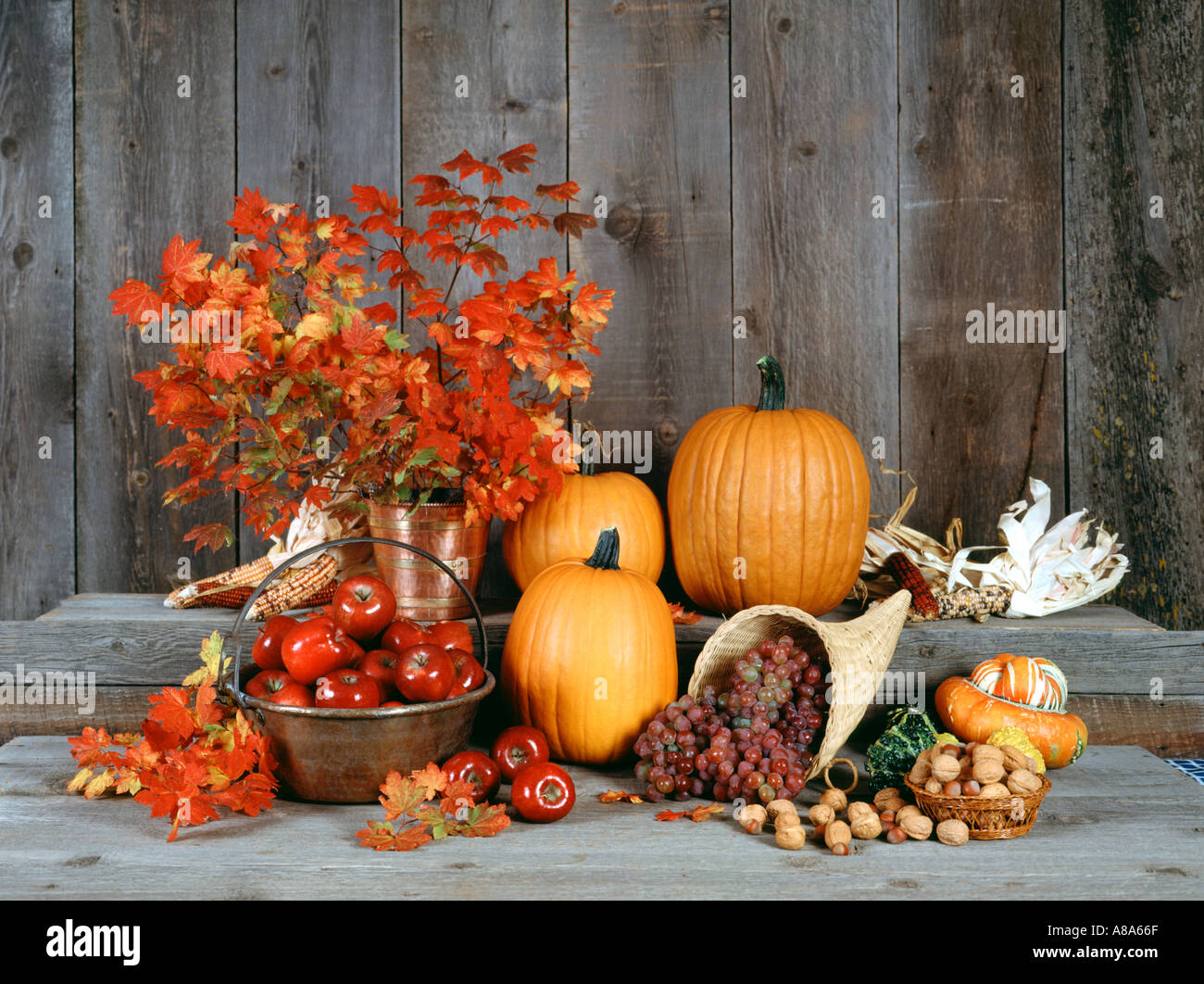 Fall harvest against old wood background - Stock Image