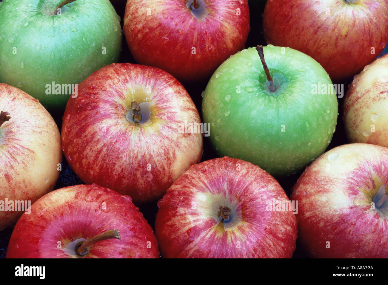 Granny smith and gala apples - Stock Image