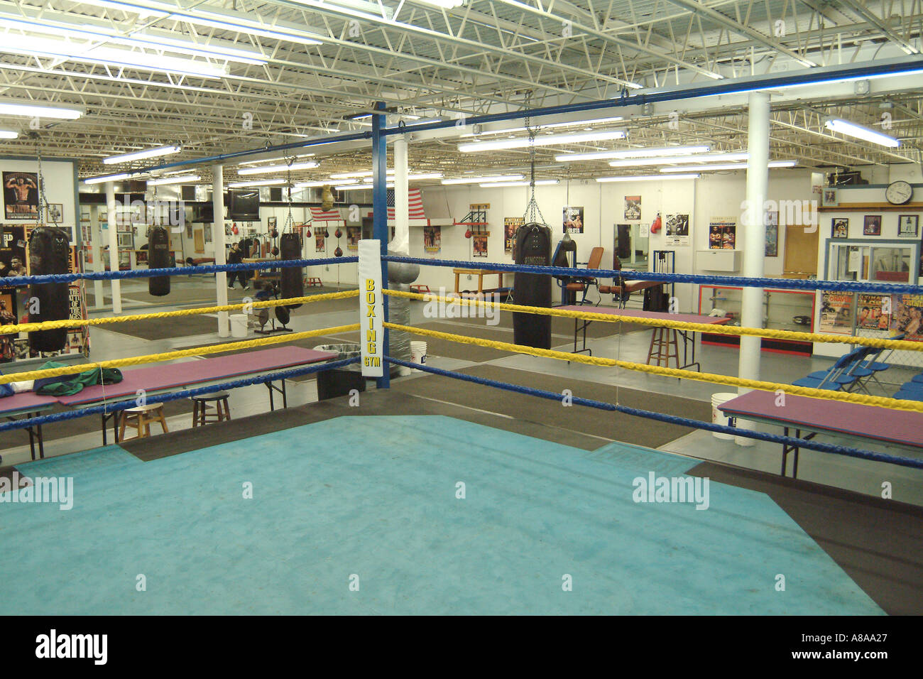 Empty Boxing Ring In Gym - Stock Image