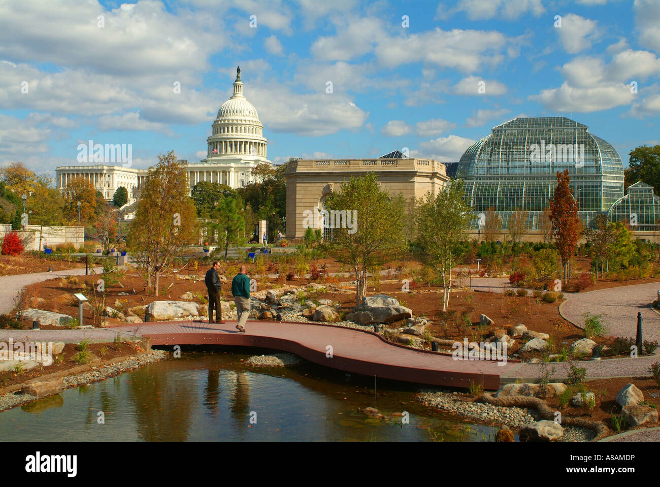 USA Washington DC U S Botanic Garden Conservatory and U S Capitol ...