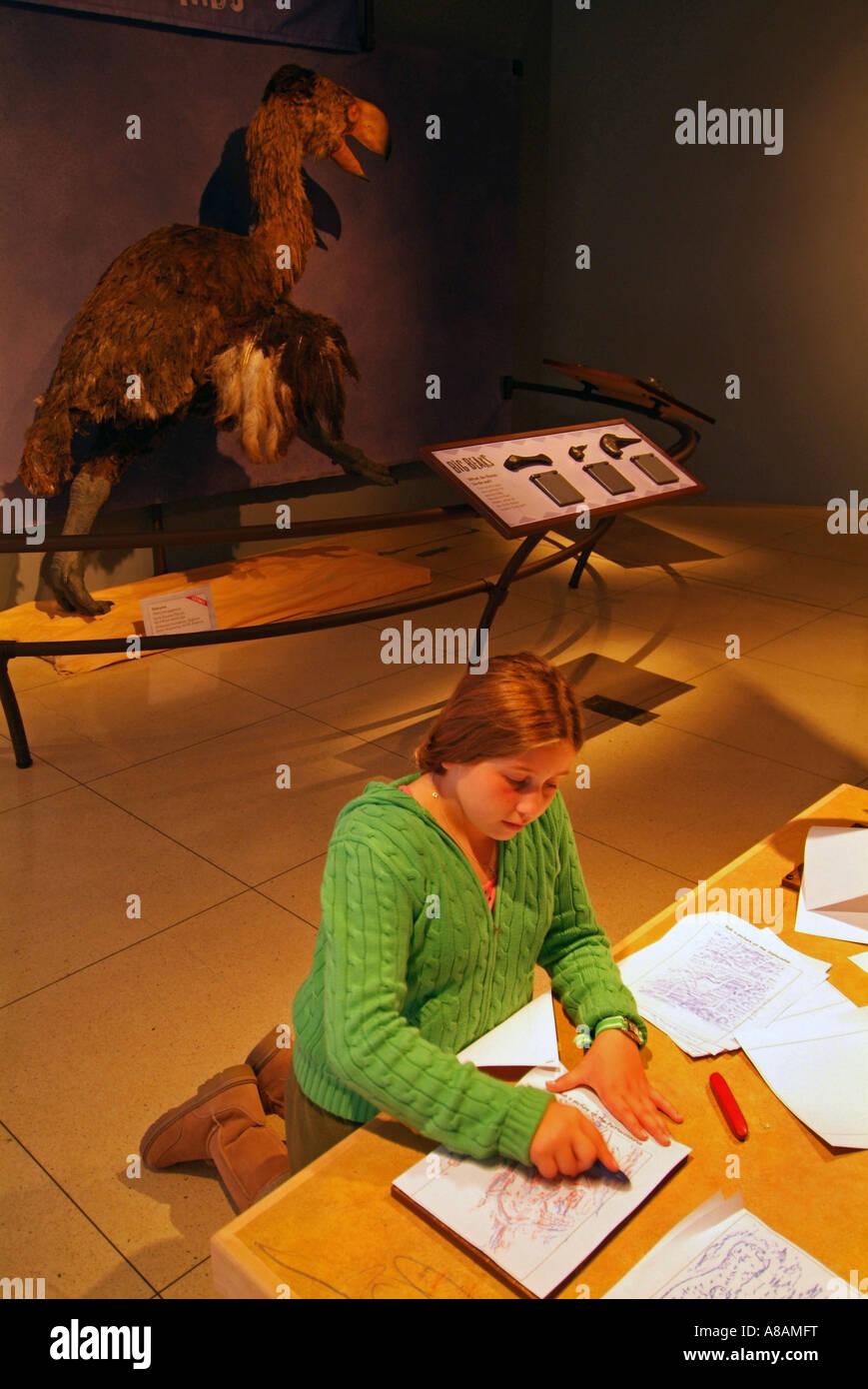 USA Washington DC National Geographic Explorer's Hall - Stock Image