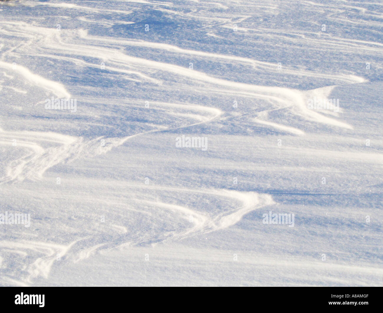Driven By Winter Wind >> Sastrugi Is Wind Driven Waves Of Snow Stock Photo 6881550 Alamy