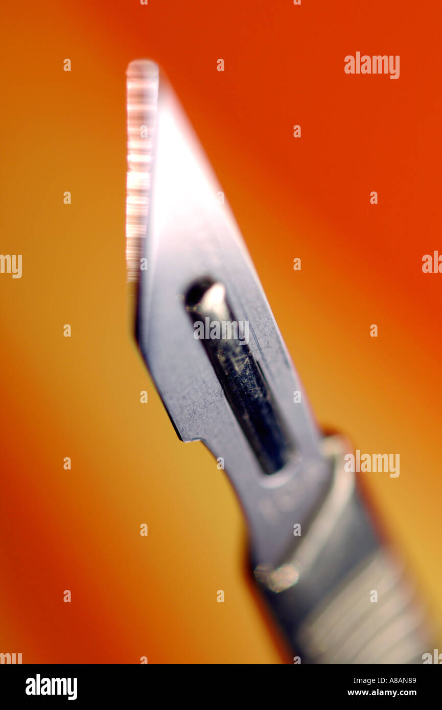 Scalpel - Stock Image