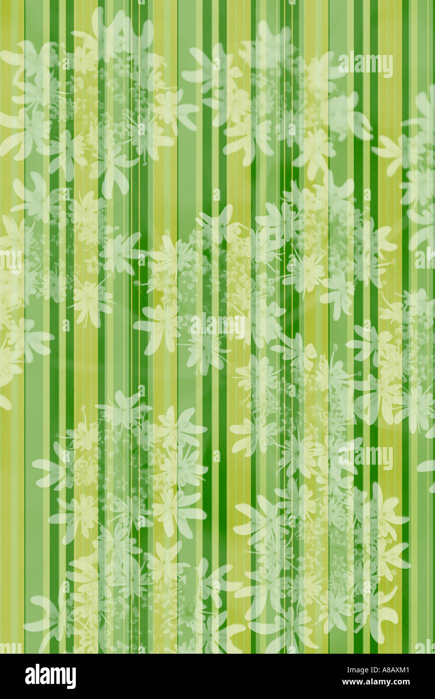 Illustrated flora and stripes 'wallpaper' pattern - Stock Image