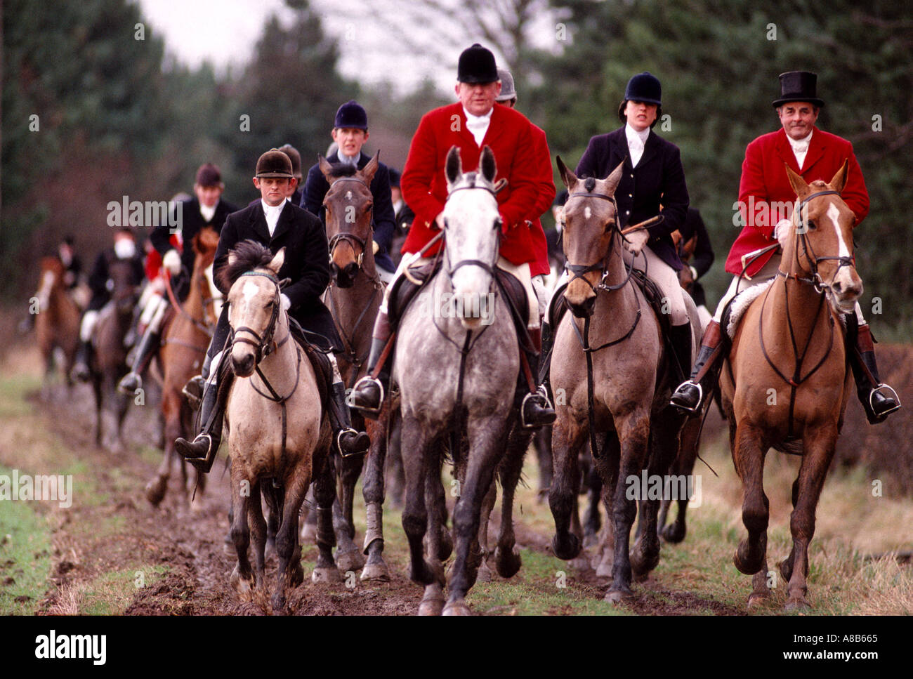 Foxhunting The Quorn hunt in Leicestershire England Stock Photo ...