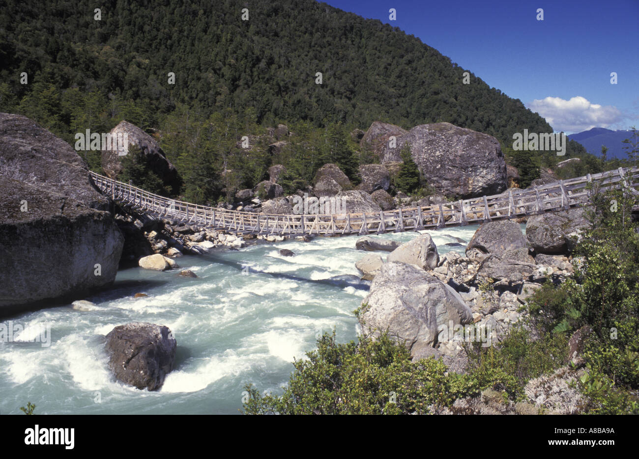 Chile Patagonia Queulat National Park - Stock Image
