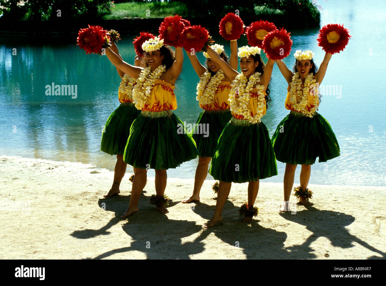 Hawaii Oahu Hula dancers - Stock Image