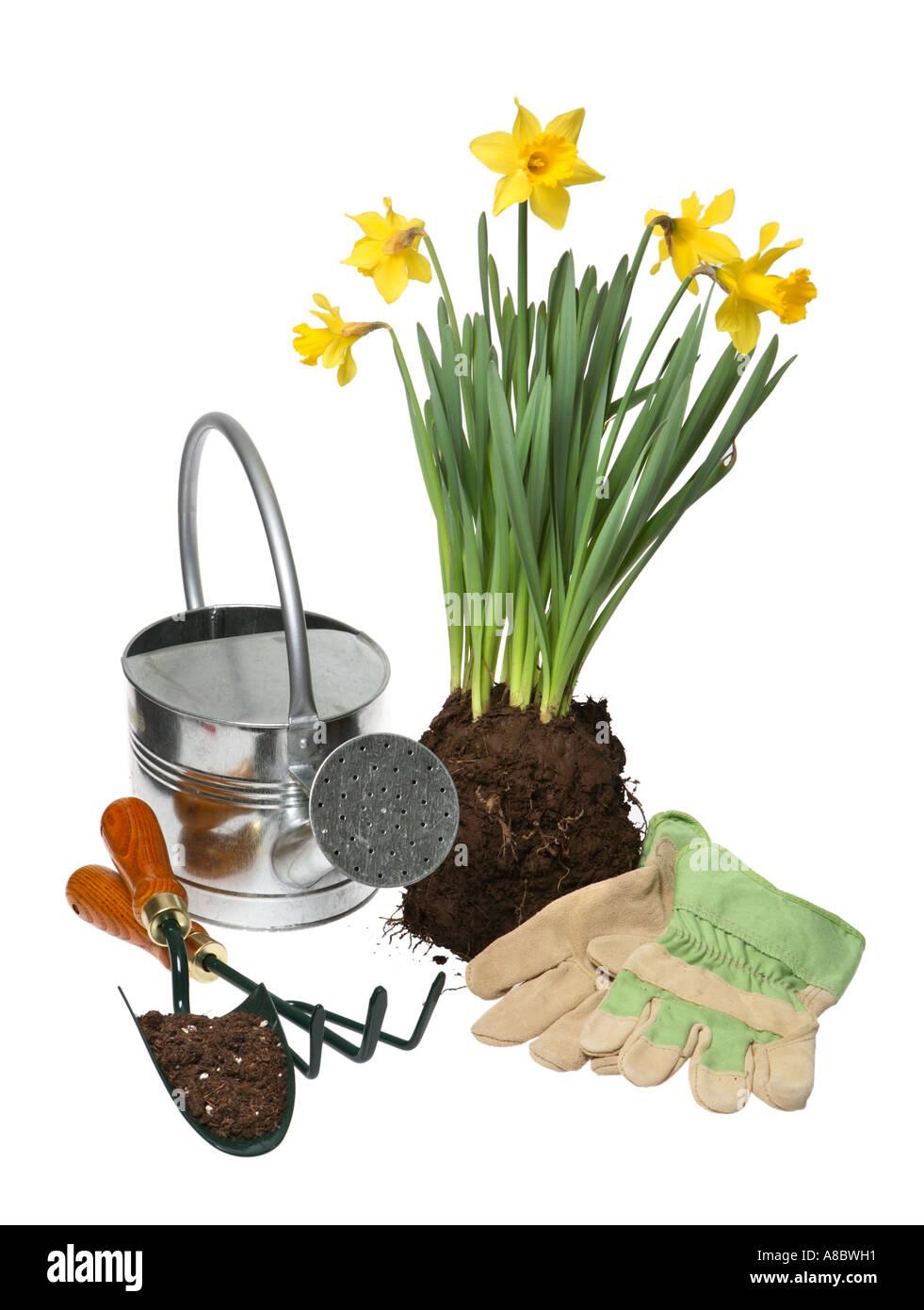 Gardening things - Stock Image
