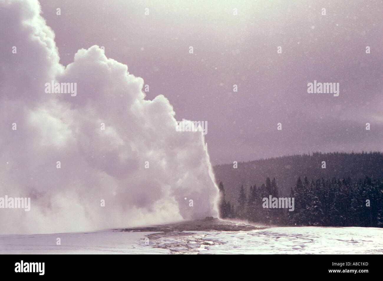 Wyoming Yellowstone National Park Old Faithful Geyser in winter - Stock Image