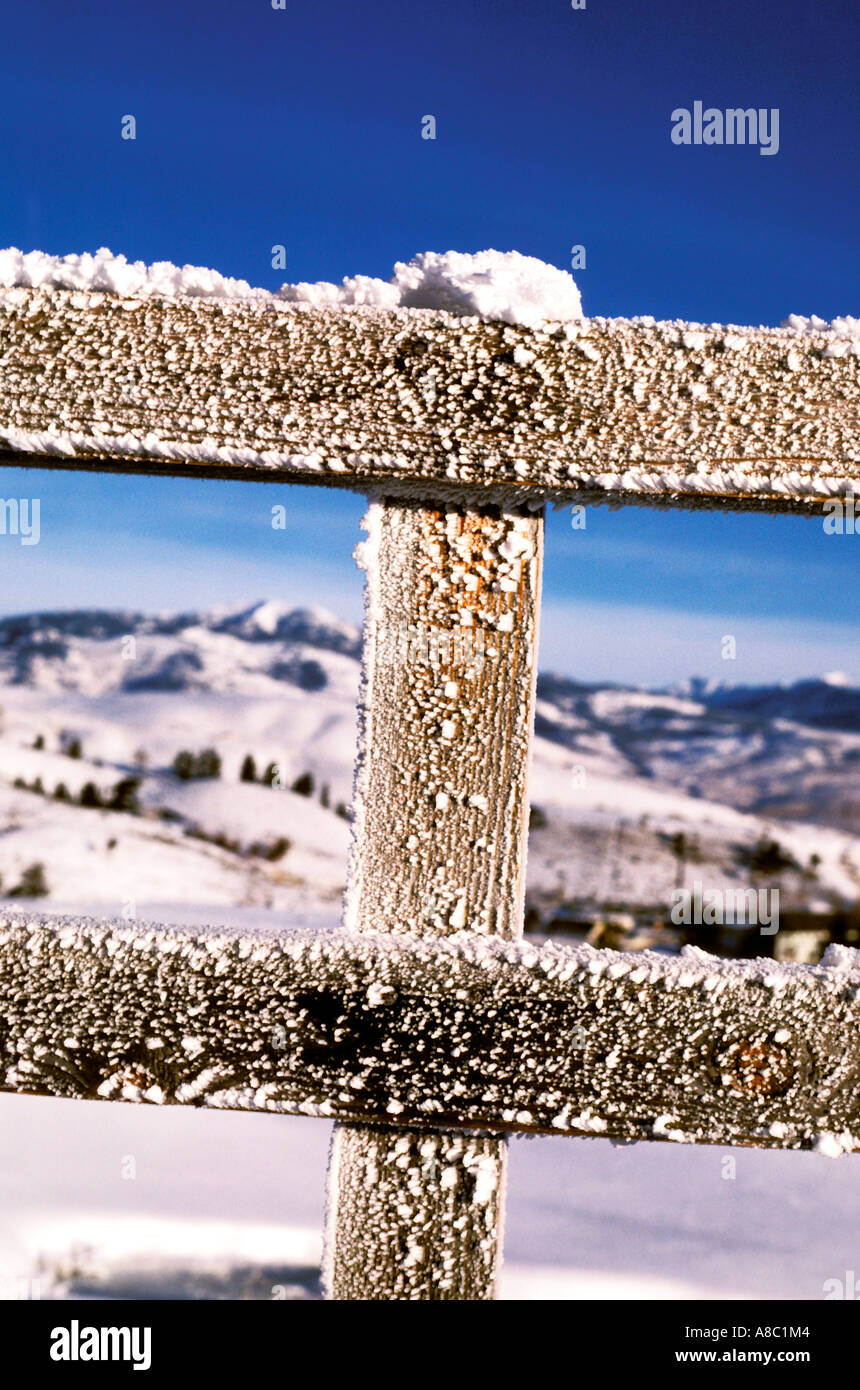 Wyoming Yellowstone National Park Hoar frost on fence in winter - Stock Image