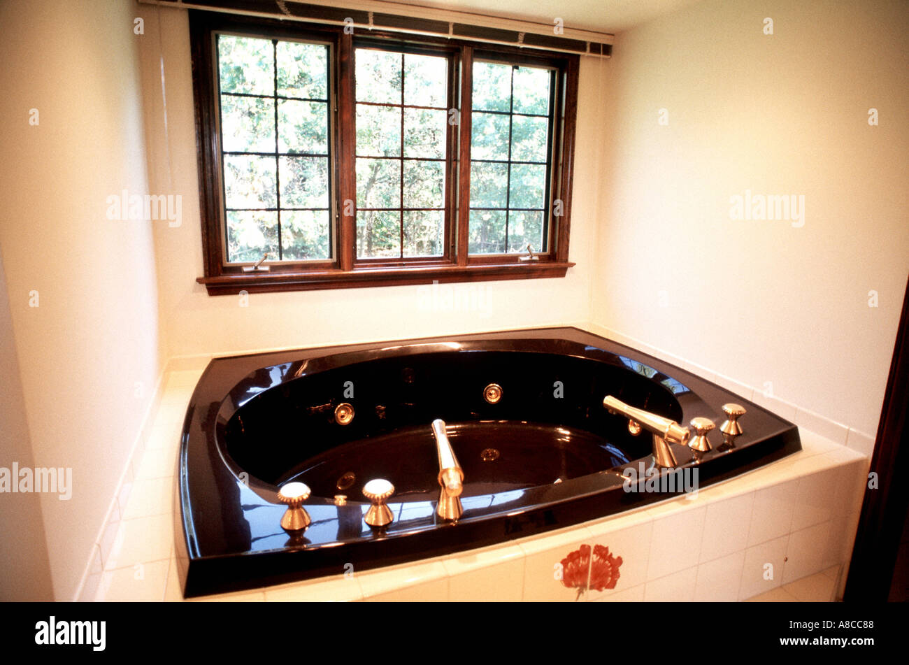 Custom House interior Pittsburgh PA USA American Whirlpool Tub in ...