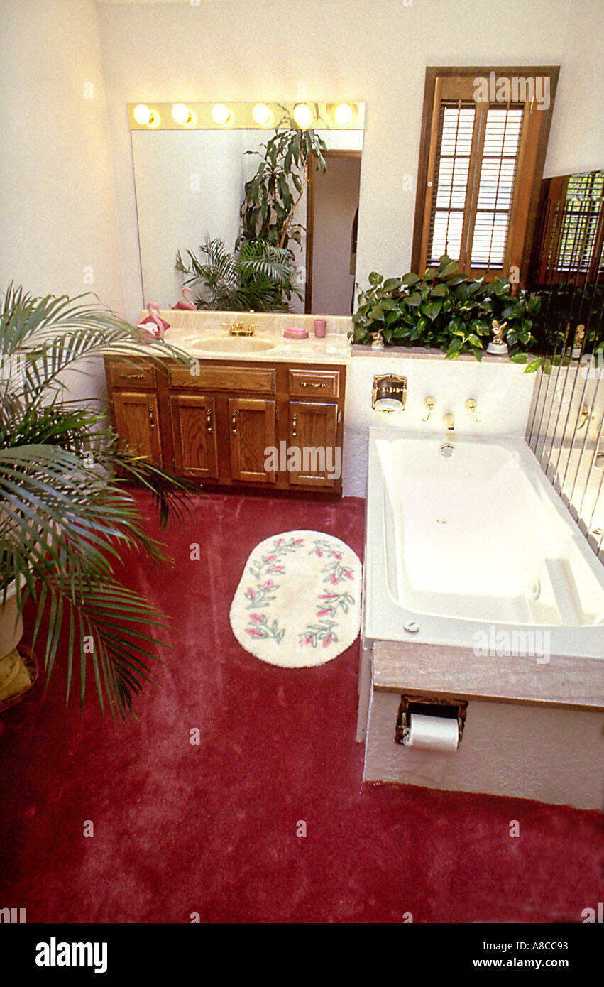 New Jersey, USA Single Family House American Whirlpool Tub in Custom ...