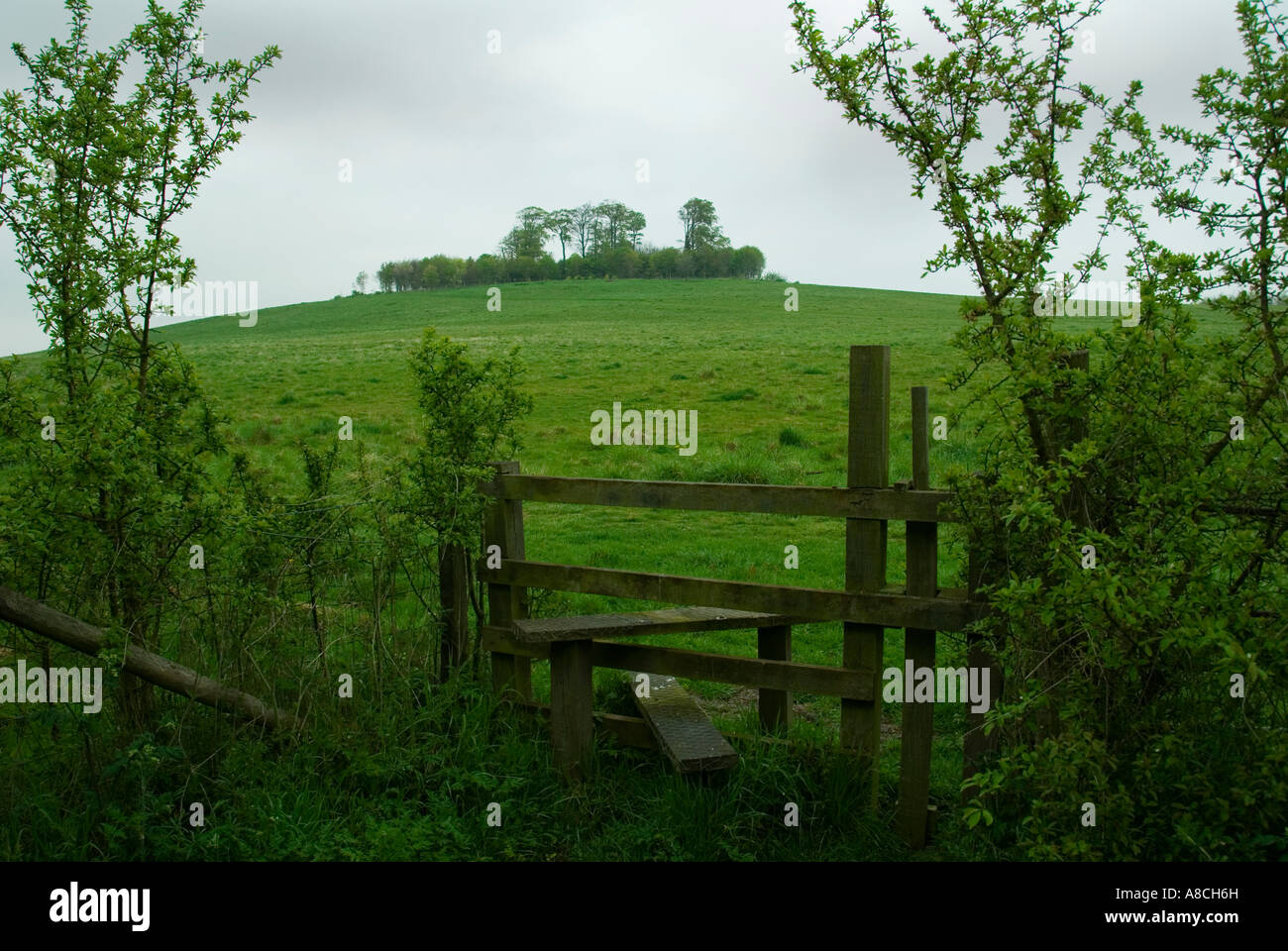 Stile Style Gate Wittenham Clumps Oxfordshire on an Overcast Day - Stock Image