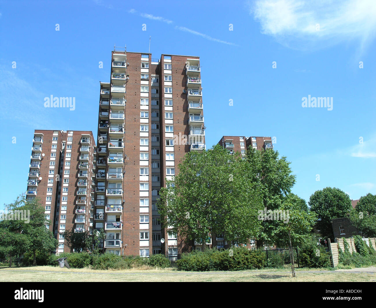 Council Estate Tower Blocks, Portland Estate, Walworth, Southwark London SE17 - Stock Image