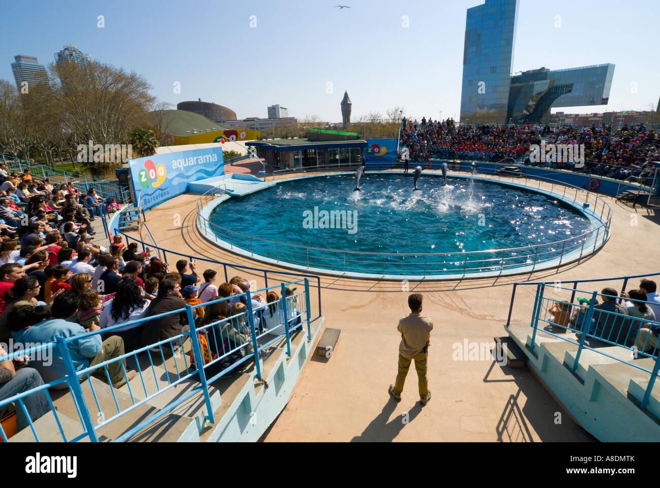 Barcelona Zoo Aquarama Dolphin Show Stock Photo 12071202 Alamy