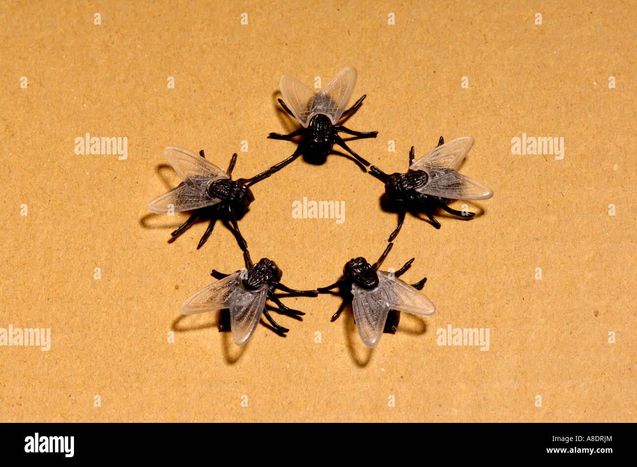 5 toy plastic flies - Stock Image