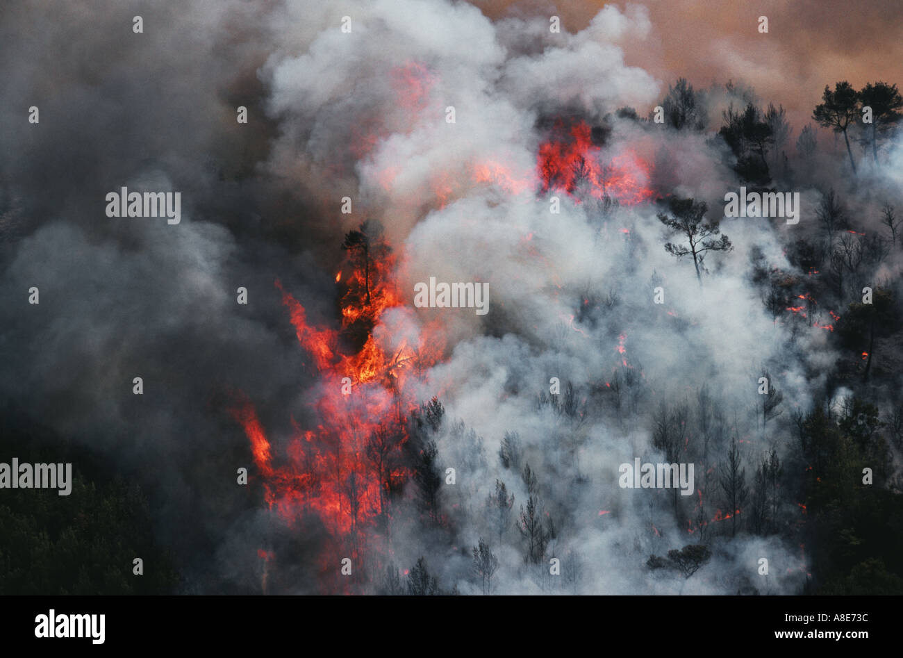 Aerial view of a wildfire and smoke near Cassis, Provence, France, Europe, - Stock Image