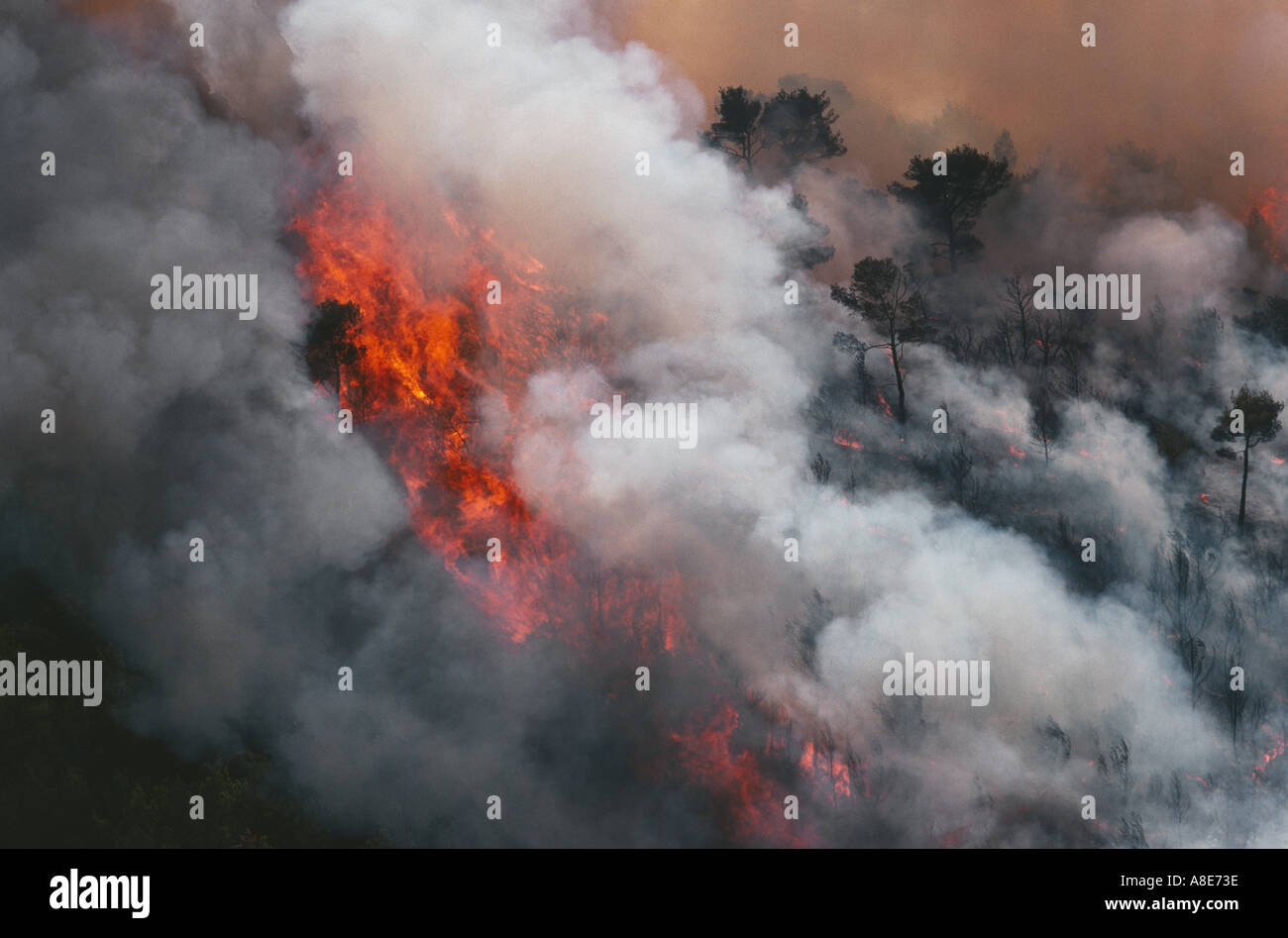 Aerial view of a wildfire and smoke near Cassis, Provence, France - Stock Image