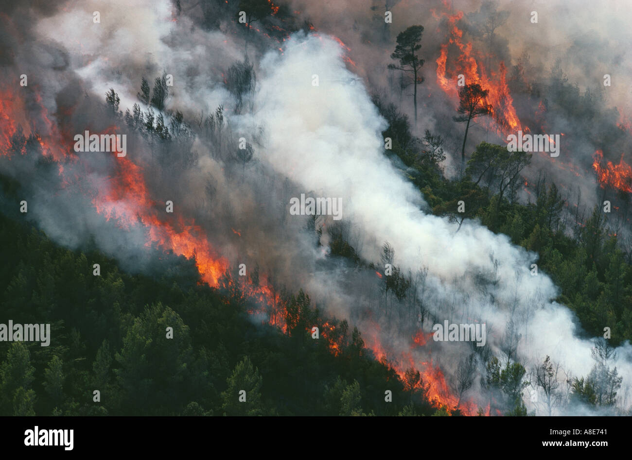 Aerial view of a wildfire and smoke near Cassis, Provence, France, Europe - Stock Image