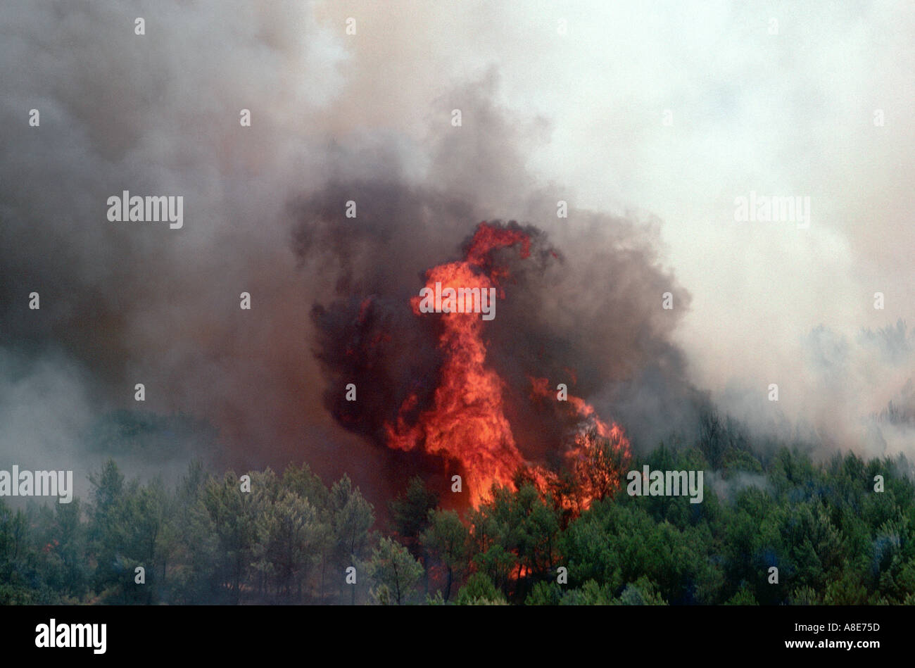 Aerial view of a wildfire and smoke near Marseille, Provence, France - Stock Image