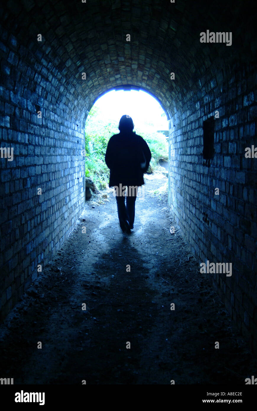 celestial alley